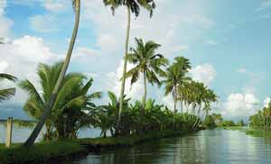 4 nights 5 days kerala package